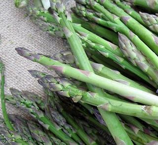 Fp growing power asparagus