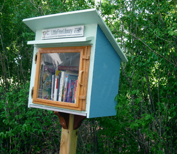 Little free library web size