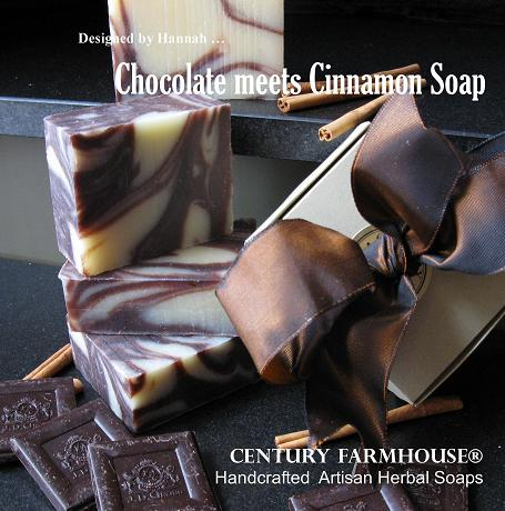 Chocolate meets cinnamon insert photo