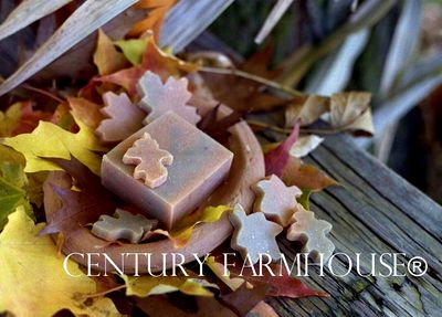 Century Farmhouse The Pumpkin Patch Soap b web