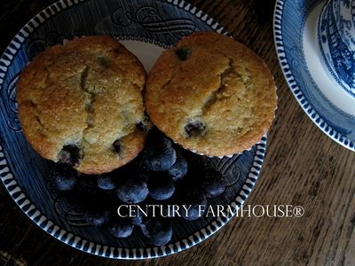 Cupcakes web