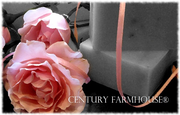 Ribbon rose oilify edge web
